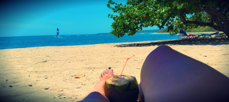 Perfect beach view - sandy beach, blue skies, mango tee and a coconut full of rum.