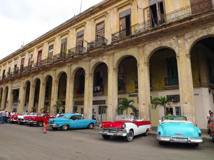 One of the iconic images of Havana, a row of 50's American cars all clean waiting for tourists to take on a tour.