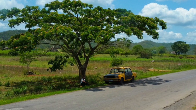 A taxi driver is sitting in the shade of a big tree in a middle of a lonely road in the rural area of Cuba. His car is a Russian Lada with mismatched car panels.