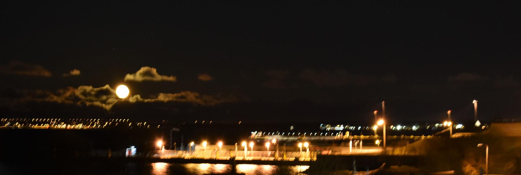 blurry moonlight