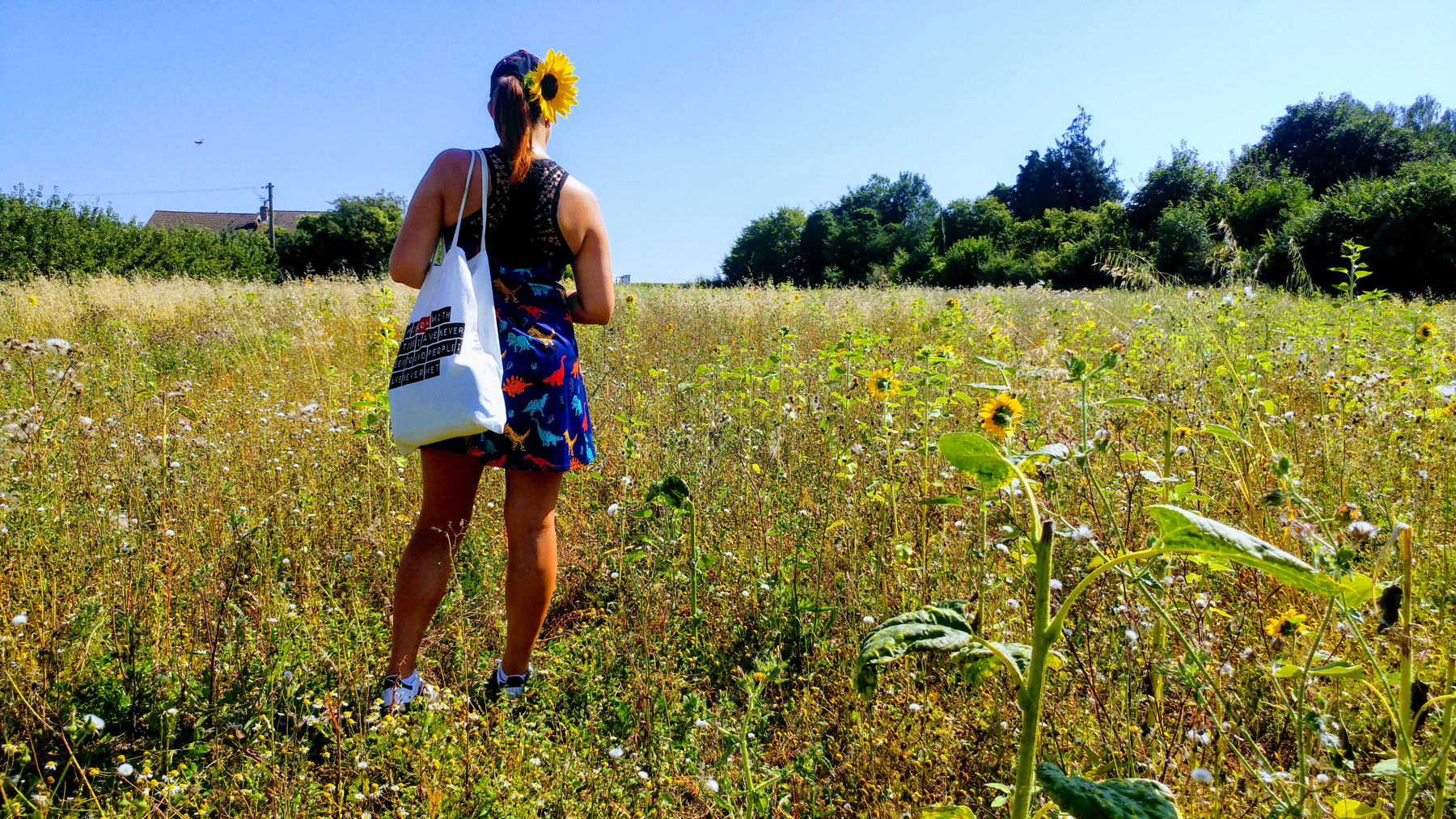 I am standing in a filed with a few sunflowers. My back is turned to the camera and I have a big sunflower in my hair.