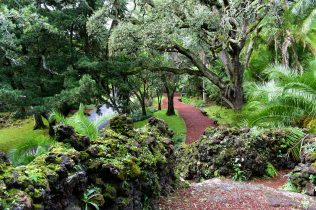 Botanical Ponta Delgada