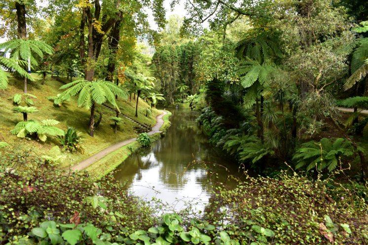 Furnas Botanical 1