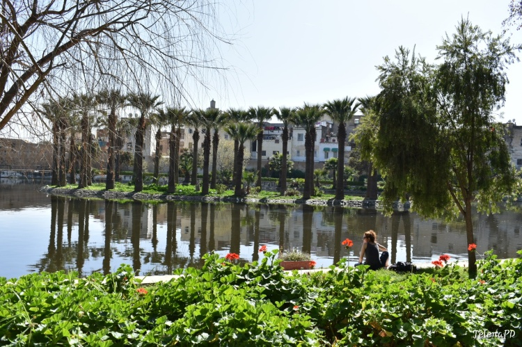View of the lake in the middle of a botanical garden in Fes. There is a woman enjoying the sunshine on the bank.