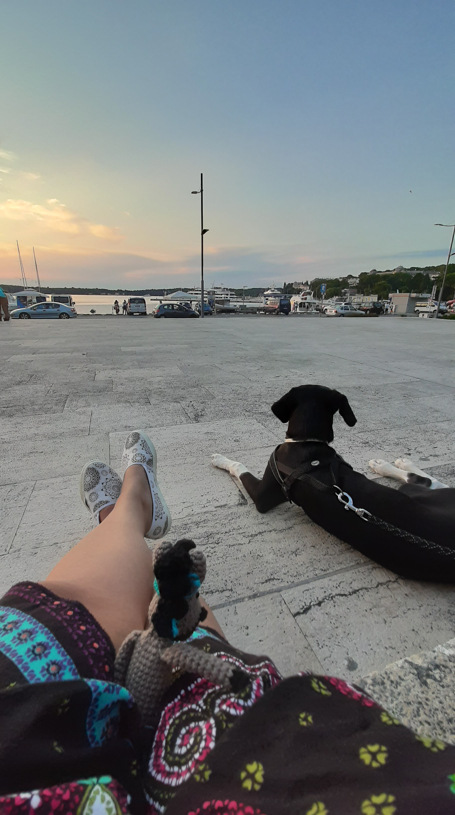 Our mascot and a dog sitting on the promenade in Pula.